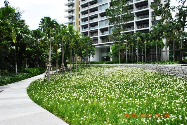 North Point: 2 Bedrooms Condo for sale in Naklua/Wong Amat ฿15,400,000